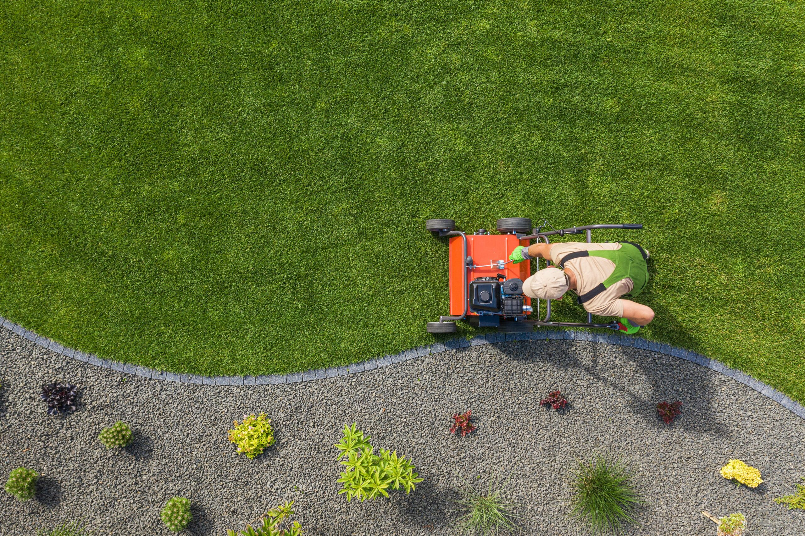 lawn aerator job for controlling lawn thatch and s VQQEQ2Q min scaled